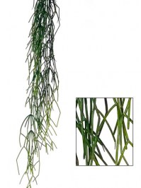 Aldik Home's Quality Artificial Succulents - Water Grass Hanging