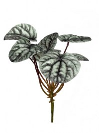 Aldik Home's Incredibly Realistic Silk Plants - Pepperomia Pick