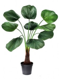Aldik Home's Incredibly Realistic Silk Plants - Sabal Leaf Plant in Pot