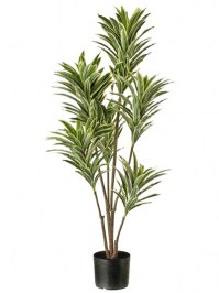 Aldik Home's Incredibly Realistic Silk Plants - Dracaena Natural Touch