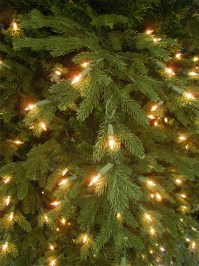 Aldik Home's Premium Artificial Christmas Trees - Mendocino Fir